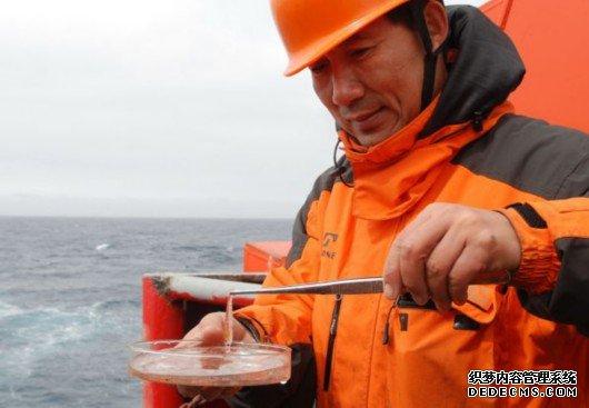 中国又被黑过度捕捞南极磷虾 外媒驳斥:别总把威胁归咎中国